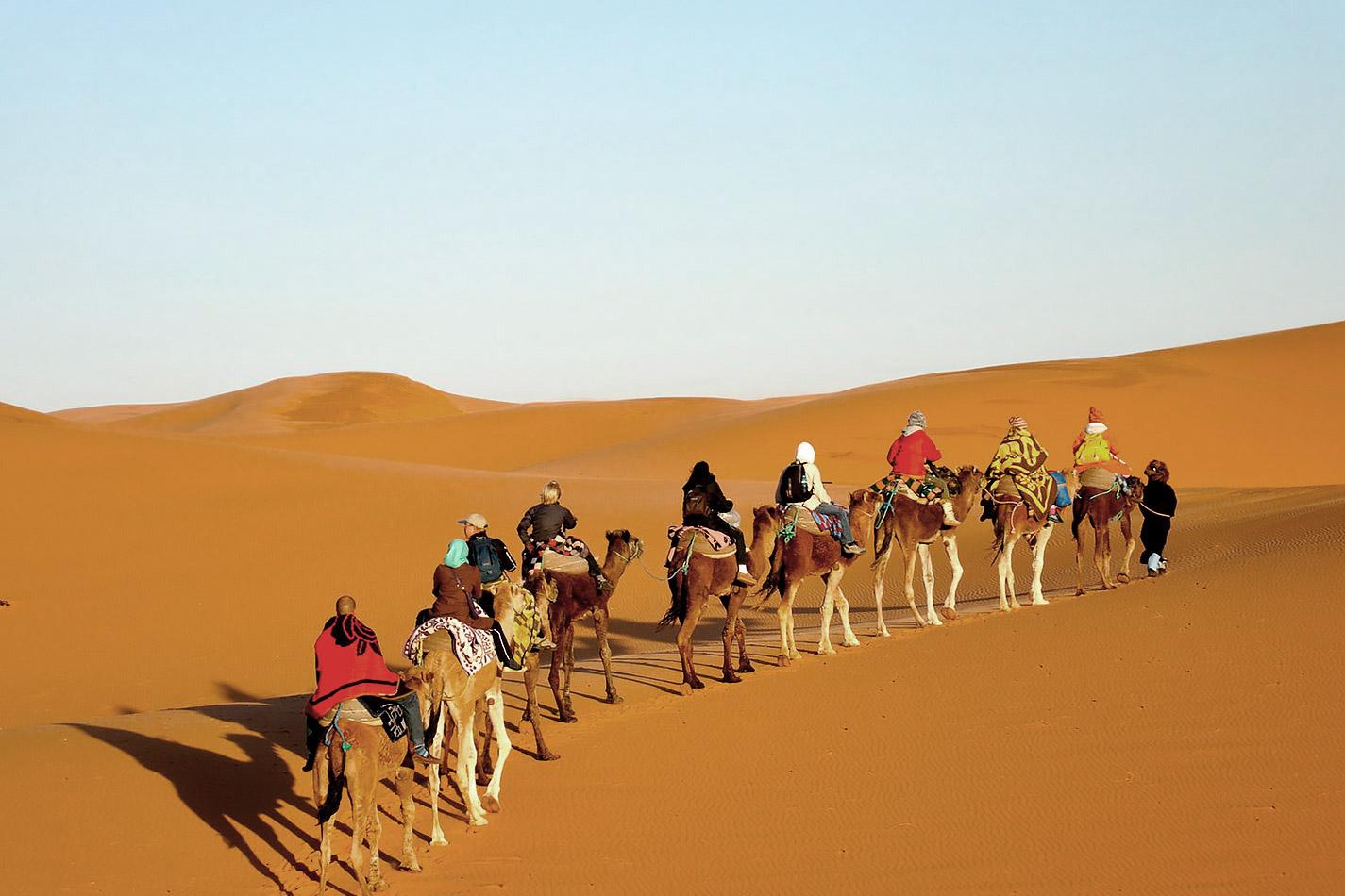 tour_6_giorni_al_deserto_puro_banner